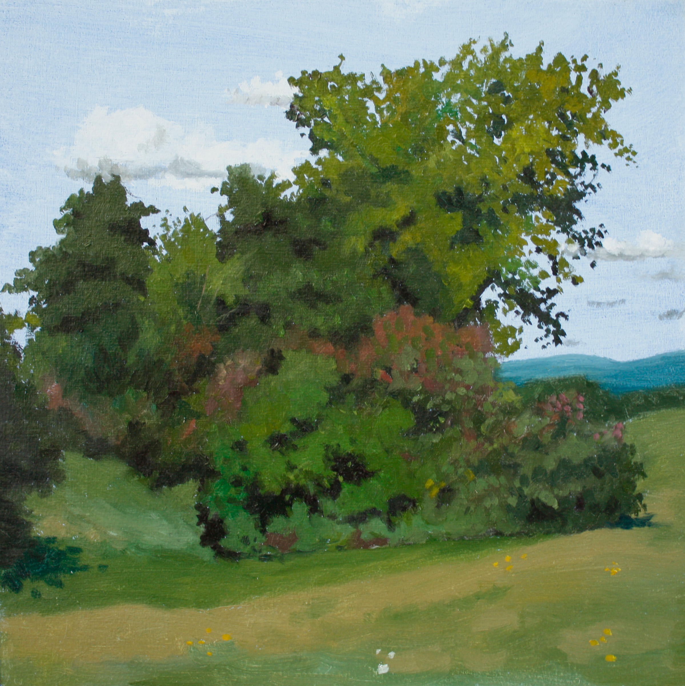 painting, oil, nature, landscape, quebec