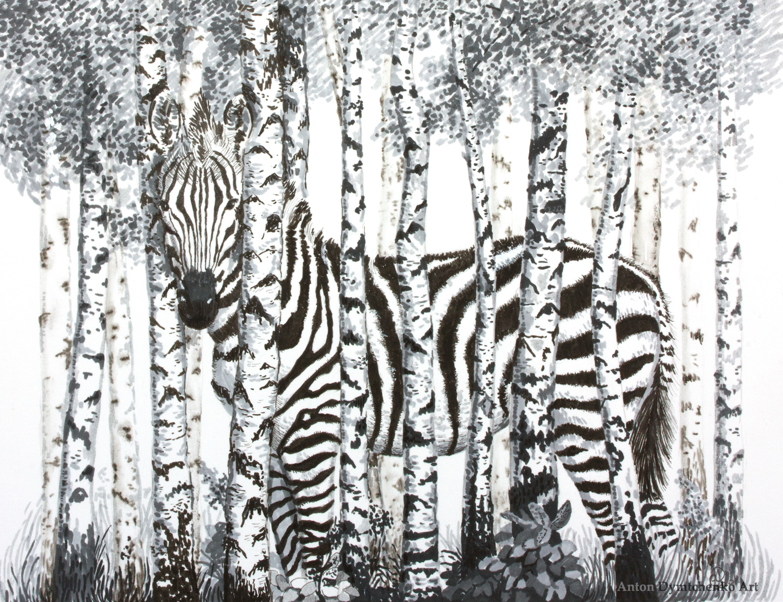 zebra forest birches camouflage ink drawing