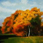 Fall in Maisonneuve Park