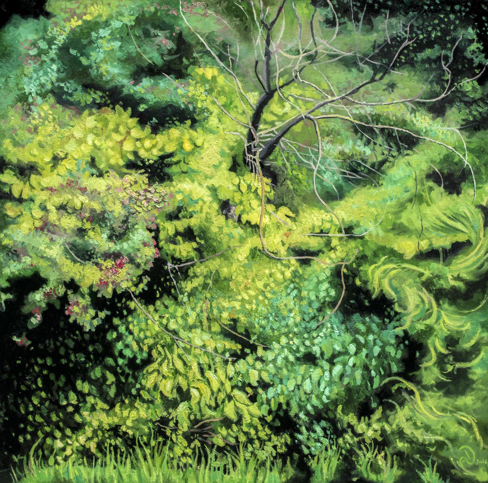 Green, landscape, nature, bush