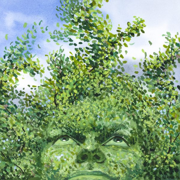 Human face looking up inside a green tree