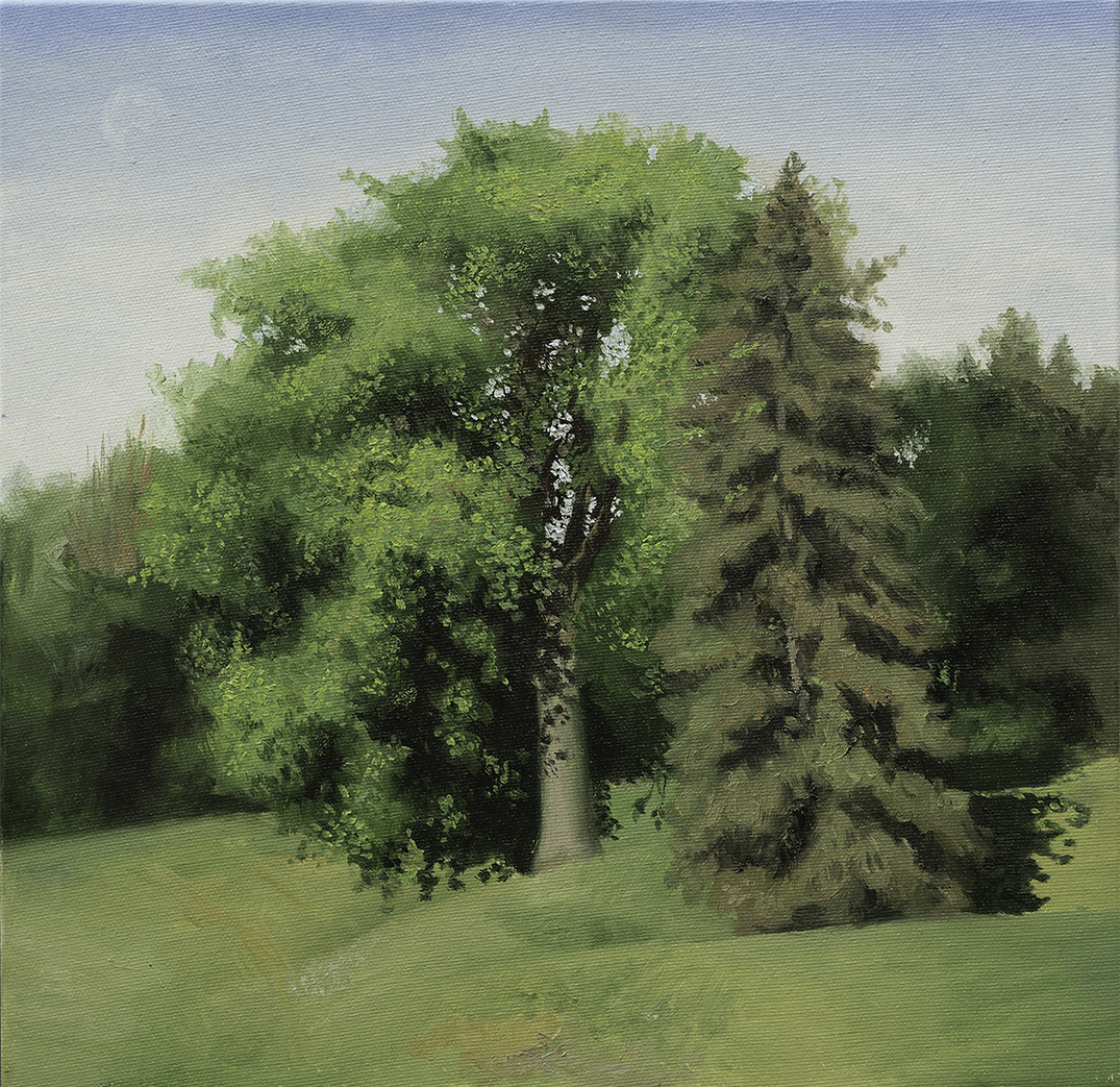 tree, park, green, nature, oil, painting