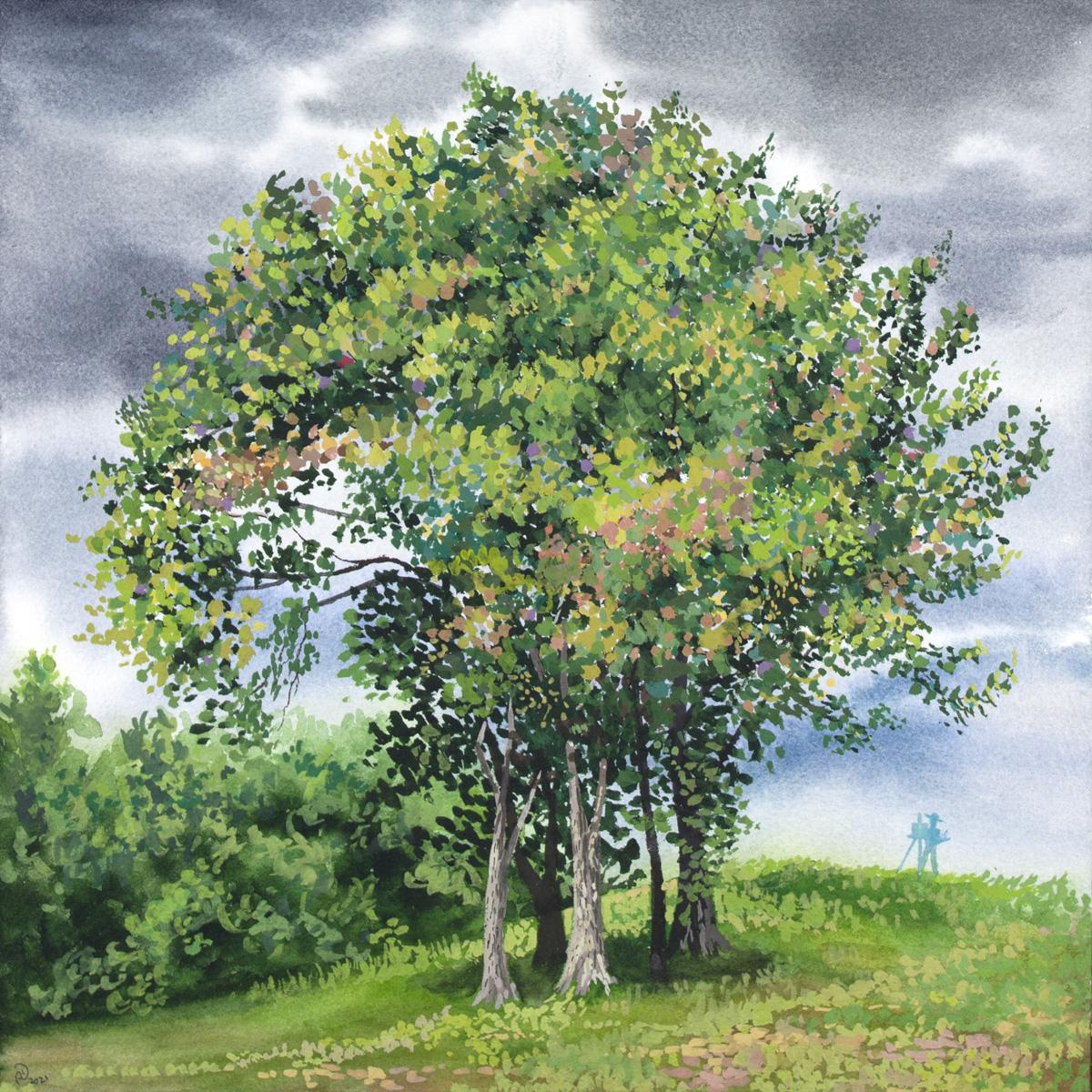 tree green painting watercolor gouache landscape
