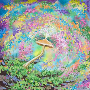Mushroom Dreaming of Magic Psychedelic