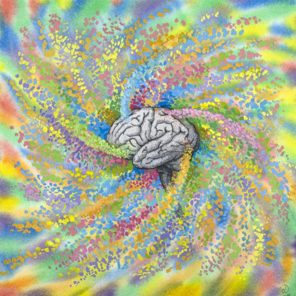Color Your Gray Matter