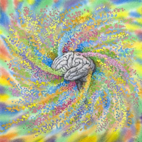 illustration, brain, color, gouache, watercolor, creativity