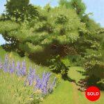 Summer Landscape (Plains of Abraham)