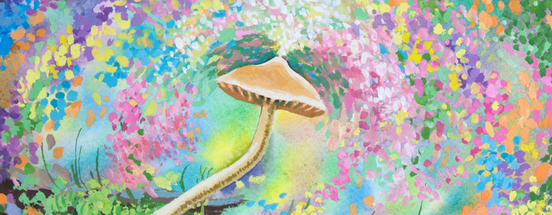 Mushroom Dreaming of Magic
