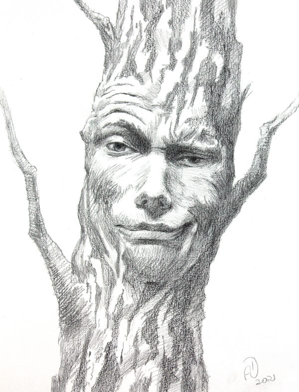 Sarcastic Tree Face Expression Pencil Drawing